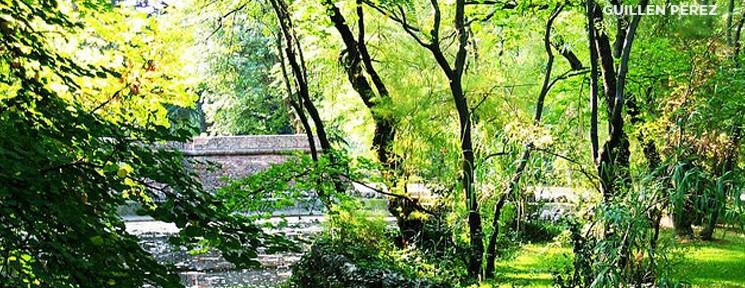 Four parks to enjoy a breath of fresh air this summer