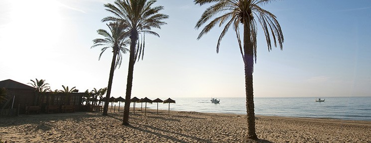 Eight Blue Flags fly proudly over Marbella's beaches