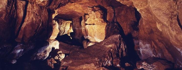 Viaja a la Prehistoria con Cantabria y sus cuevas