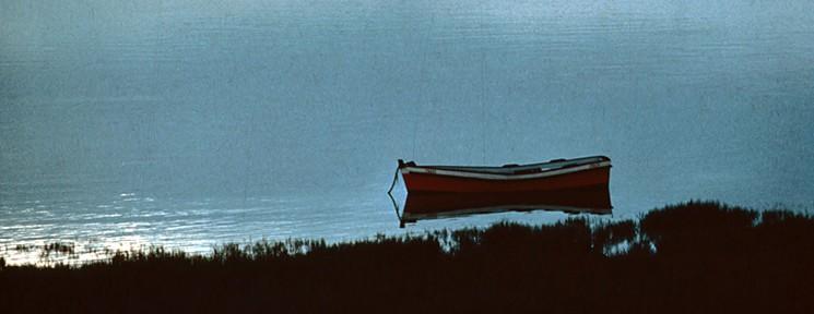 Barca en las Marismas de Sancti Petri. / Foto: página oficial de la Junta de Andalucía.