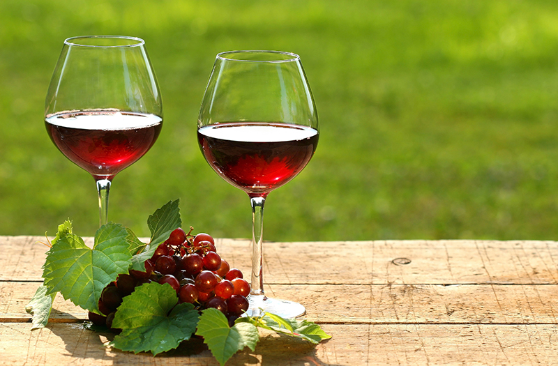 copas de vino enoturismo