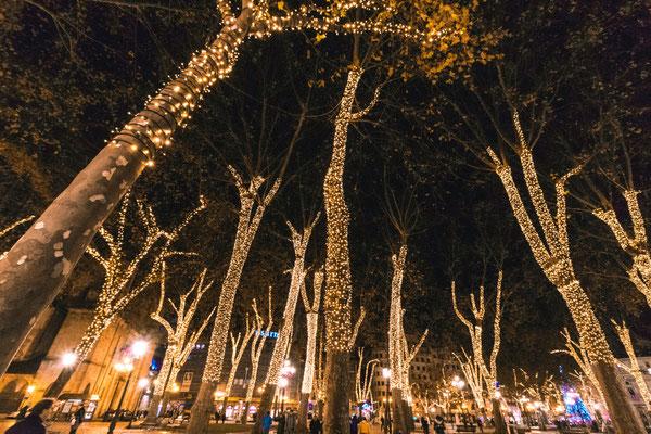 arboles plaza arriaga navidad bilbao