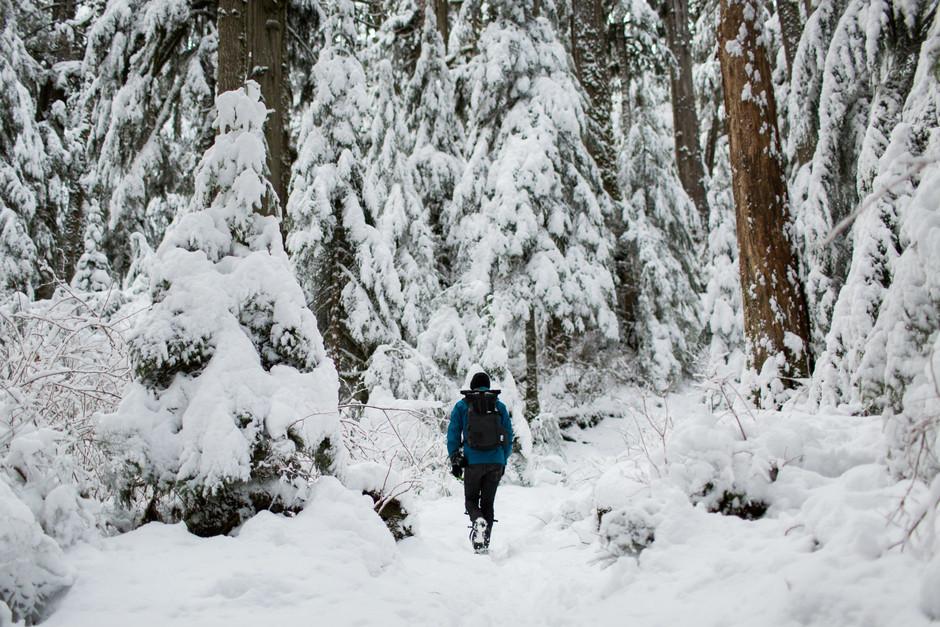 Persona paseando en la nieve