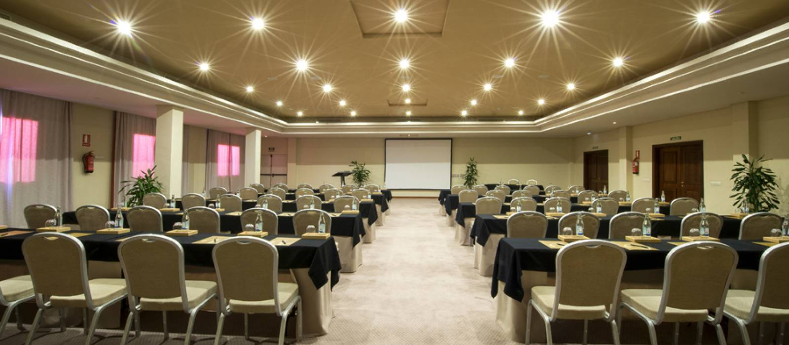 Services Hotel Vincci Tenerife La Plantación del Sur - Conference Rooms