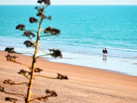 Vincci Costa Golf 4* - Cádiz