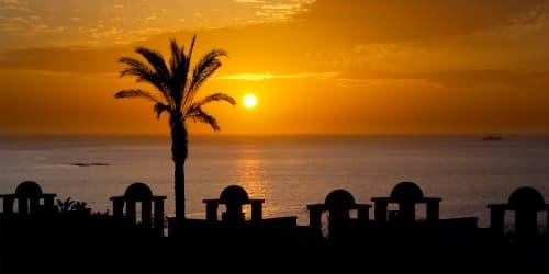 Offerte Hotel Vincci Tenerife Sud Plantation - Prenota ora e risparmia! -20%