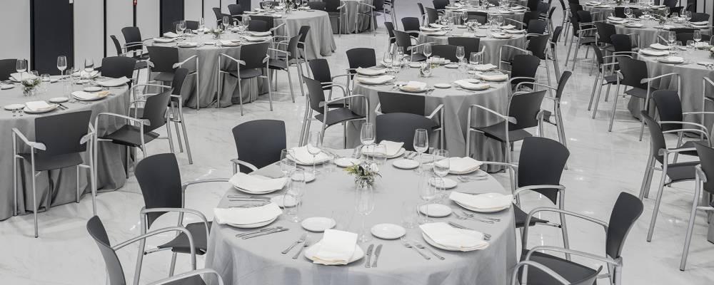 Salón Azul - Hotel Vincci Soma