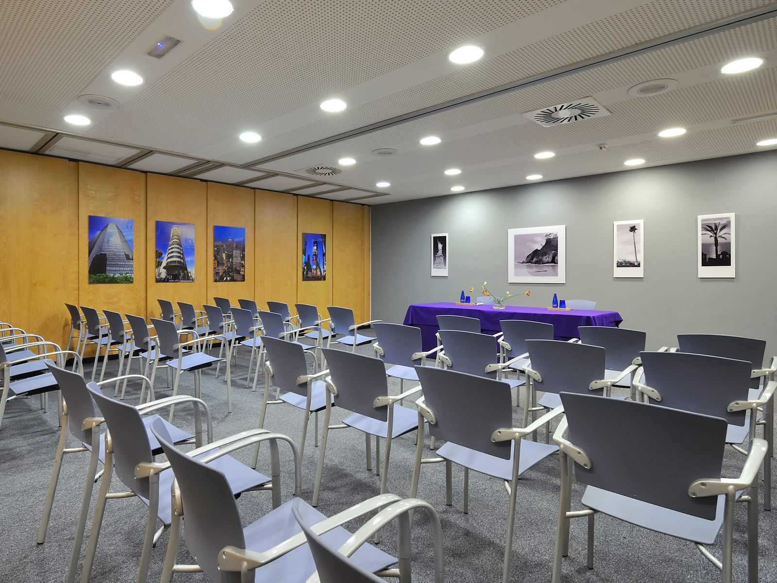 Magenta Meeting Room - Vincci Soma 4*